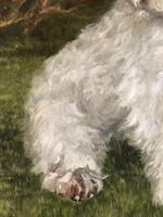 20th Century Oil Painting Animal Portrait Highland Westie White Terrier Dog (7 of 12)
