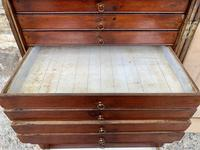 Georgian Collectors Tabletop Specimen Cabinet (20 of 26)
