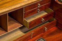 Geo III Mahogany Secretaire Bookcase (8 of 10)