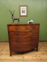 Antique 19th century Mahogany Bow Chest of Drawers, Country House Chest (18 of 18)