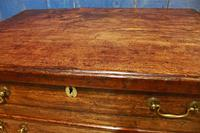 19th Century Country Elm Trunk (8 of 13)
