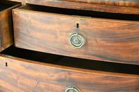 Antique Mahogany Bow Front Chest of Drawers 5334645 (7 of 13)