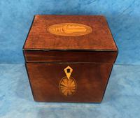 18th Century Harewood Inlaid Single Mahogany Tea Caddy (3 of 18)