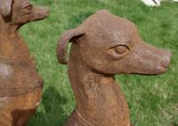 Pair of Large Outdoor Weathered Cast Iron Greyhound Dogs (4 of 9)