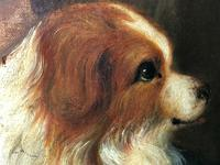 """Genre 19th Century Oil Painting Portrait Young Girl & Cavalier King Charles Spaniel """"Faithful Friend"""" (10 of 12)"""