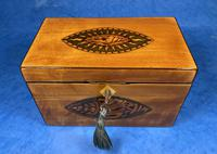 Late 18th Century Fruitwood and Applewood Twin Tea Caddy (18 of 21)