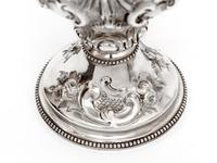 Victorian Silver Two Handle Trophy Cup Chased with Flowers and Scrolls (3 of 5)