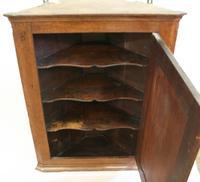 Georgian Oak Corner Cupboard of Small Proportion (2 of 3)