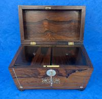 William IV Rosewood Twin Section Tea Caddy with Inlay (10 of 11)