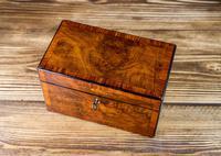 Twin Burr Walnut Tea Caddy 1870 (4 of 9)