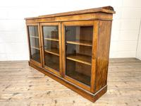 19th Century Glazed Walnut Bookcase (10 of 14)