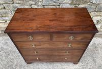 Small Antique Georgian Mahogany Chest of Drawers (7 of 16)