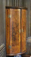 Antique Burr Walnut Corner Cupboard (4 of 9)
