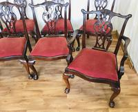 Set of Eight Oversized Dining Chairs (15 of 18)