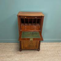 Regency Mahogany Antique Estate Cupboard with Fitted Interior (8 of 8)
