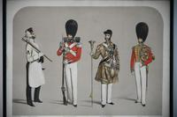 Costumes of the First or Grenadier Regiment (12 of 14)