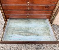 Georgian Collectors Tabletop Specimen Cabinet (16 of 26)