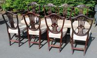 1900's Quality Set of 8 Mahogany Wheatcheaf Chairs - 7 + 1 Carver - Pop-out Seats (3 of 3)