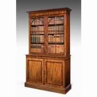 Regency Period Mahogany Bookcase with Gothic Tracery (2 of 6)
