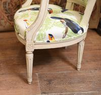 Pair of Painted Arm Chairs Regency Toucan Print Interiors (5 of 5)
