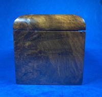 Victorian Tunbridge Ware Twin Section Tea Caddy (2 of 18)