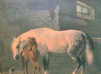 Aft: Emil Volkers Beautiful Vintage Framed Equestrian Print On Board (4 of 12)