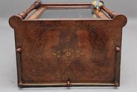 19th Century Burr Walnut Inlaid Music Cabinet (6 of 9)