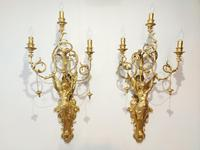 Pair of 19th Century Italian Neo-classical Gilt Wall Sconces