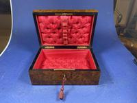 French 19th Century Burr Cedar Box. (6 of 14)
