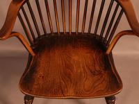 Thames Valley Yew Wood Windsor Chair (6 of 11)
