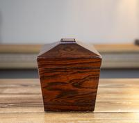 Early Victorian Rosewood Tea Caddy c.1840 (5 of 8)