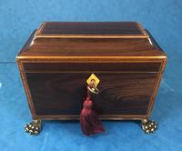 Regency Black Walnut Sarcophagus Twin Section Tea Caddy (2 of 11)