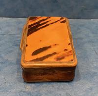 Victorian Horn & Tortoiseshell Snuff Box (5 of 13)