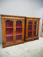 Matched Pair of Victorian Display Cabinets (8 of 17)