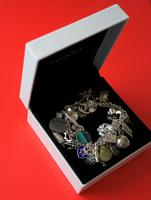 A Vintage 1963 Heavy Silver Charm Bracelet With 38 Silver Charms - Ideal Birthday Present  / Boxed (7 of 10)