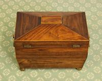Antique Rosewood Tea Caddy (8 of 15)