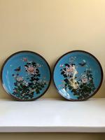 Antique Pair of Japanese Cloisonne Plates, Meiji Period