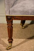 Regency Rosewood Tub Armchair Reupholstered (7 of 8)