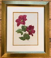 Sublime Claret Clematis Chromolithograph. Henry G Moon. 1903 (3 of 4)