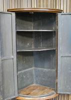 Antique Burr Walnut Corner Cupboard (7 of 9)