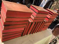 30 Antique Leather Bound Law Books 1910-1940 (7 of 7)