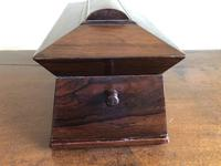 Large Rosewood William IV Sarcophagus Style English Tea Caddy (5 of 6)
