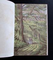 1880 A Week's Holiday in The Forest of Dean.  Rare 1st Edition, Coloured  Plates & Map (4 of 5)