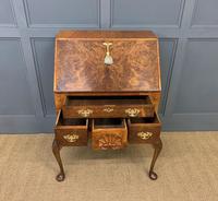 Very Good Queen Anne Style Burr Walnut Bureau (8 of 18)