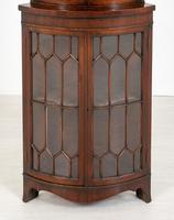 Bow Fronted Double Mahogany Corner Cabinet (3 of 6)