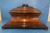 Victorian Burr Cedar & Ebony Shaped Tea Caddy (10 of 20)