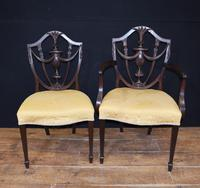 Set 10 Adams Shield Back Dining Chairs Mahogany (6 of 9)
