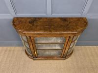 Victorian Burr Walnut Glazed Side Cabinet (4 of 15)
