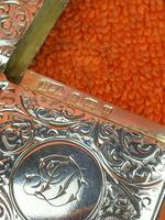 Antique Sterling Silver Hallmarked Large Vesta Case Sirus 1900, Horton & Allday (5 of 9)