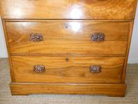 Large 19th Century Camphor Wood Colonial Chest of Drawers (7 of 11)